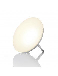 LT 500 DAYLIGHT LAMP